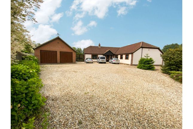 Thumbnail Detached bungalow for sale in The Meadows, King's Lynn