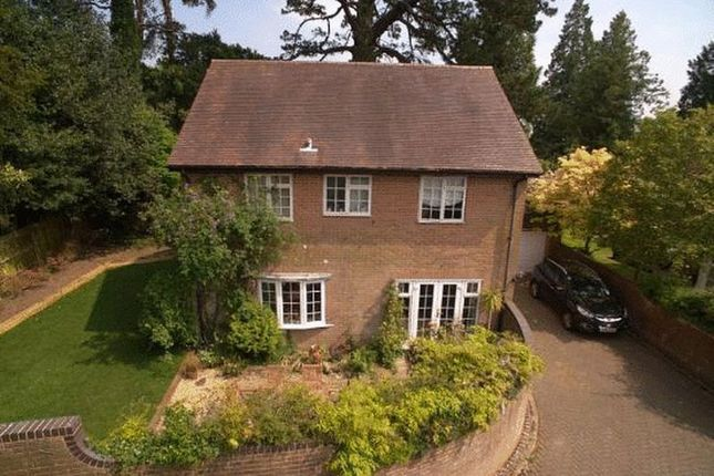 Thumbnail Detached house to rent in Northerwood Avenue, Lyndhurst
