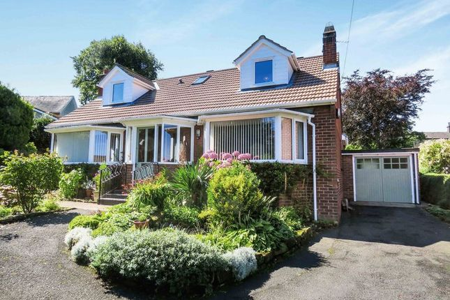 Thumbnail Detached house for sale in The Avenue, Alnwick