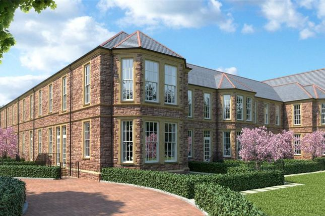 Thumbnail Terraced house for sale in The Hamptons, Cotford St. Luke, Taunton, Somerset