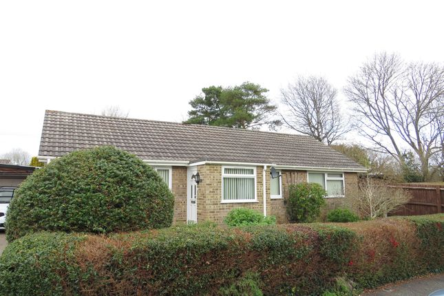 Thumbnail Detached bungalow for sale in Willow Avenue, Fordingbridge