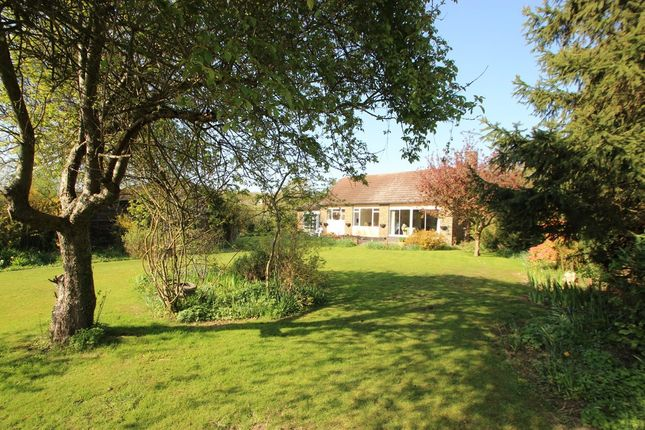 Thumbnail Detached bungalow for sale in Bramble Road, Benfleet