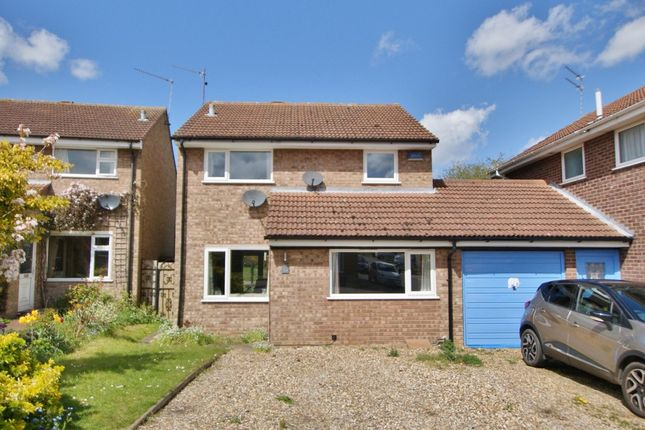 Thumbnail Detached house for sale in Chestnut Avenue, Spixworth, Norwich