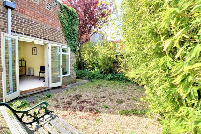 Garden At Back of Dyke Road, Brighton BN1