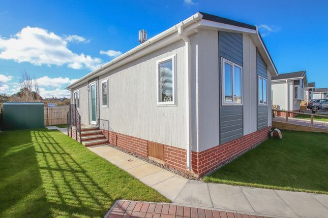 Thumbnail Bungalow for sale in Milton Street, Saltburn-By-The-Sea