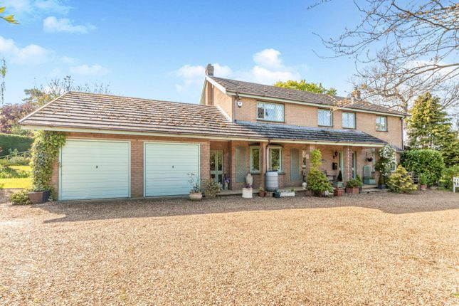 Thumbnail Detached house to rent in Witham-On-The-Hill, Bourne