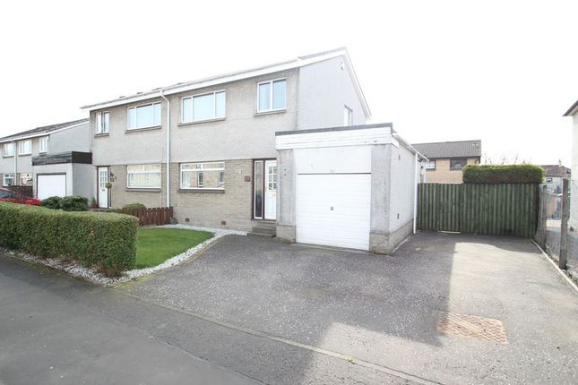 Thumbnail Semi-detached house for sale in Forbes Street, Alloa