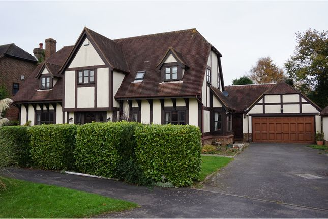 Thumbnail Detached house for sale in Court Meadow, Rotherfield