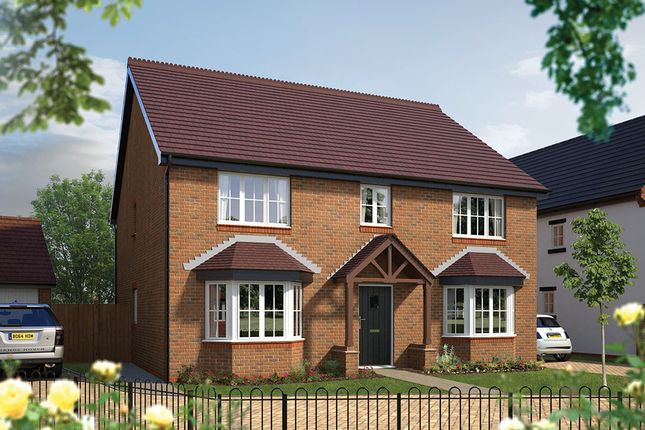 """Thumbnail Detached house for sale in """"The Winchester"""" at Hall End, Wootton, Bedford"""