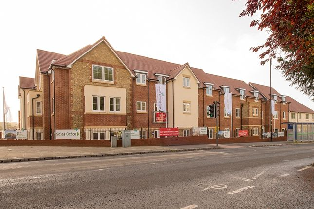 Thumbnail Property for sale in Stakes Road, Purbrook, Waterlooville