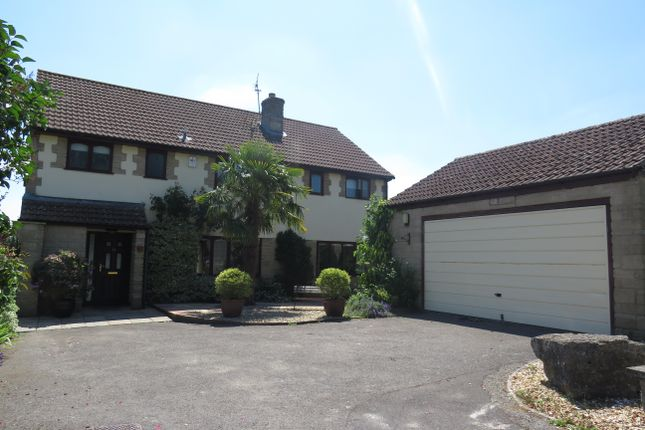 Thumbnail Detached house to rent in Glovers Close, Milborne Port, Sherborne