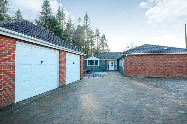 Thumbnail Bungalow for sale in Newton Road, Bovey Tracey, Newton Abbot