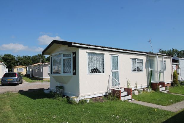 Thumbnail Property for sale in Little Clacton, Essex