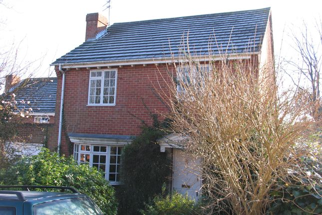 Thumbnail Detached house to rent in Queen Annes Close, Lewes