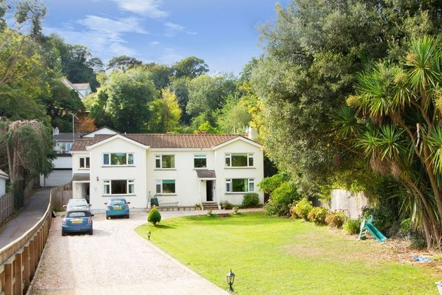 Thumbnail Detached house for sale in Ilsham Road, Torquay