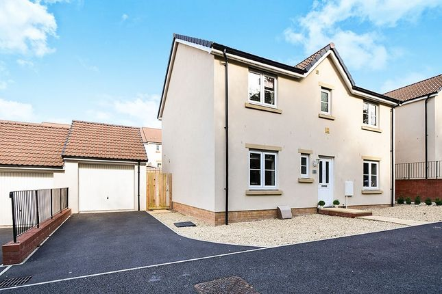 Thumbnail Detached house for sale in Cornflower Way, Newton Abbot