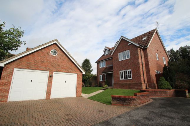 Thumbnail Detached house for sale in Cauldwell Avenue, Ipswich