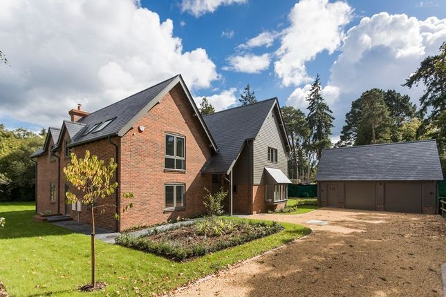 Thumbnail Detached house for sale in Forest Park Road, Brockenhurst