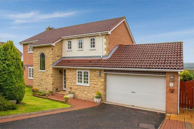 Collingwood Drive, Hexham, Northumberland NE46