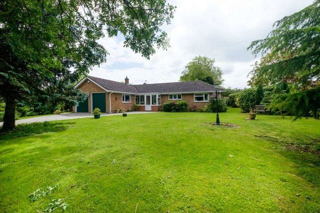 Thumbnail Detached bungalow for sale in School Lane, Bolnhurst, Bedford