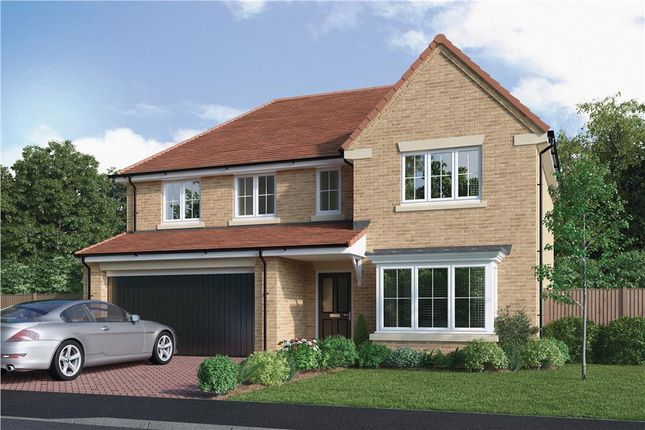 """Thumbnail Detached house for sale in """"The Bayford"""" at Elm Avenue, Pelton, Chester Le Street"""