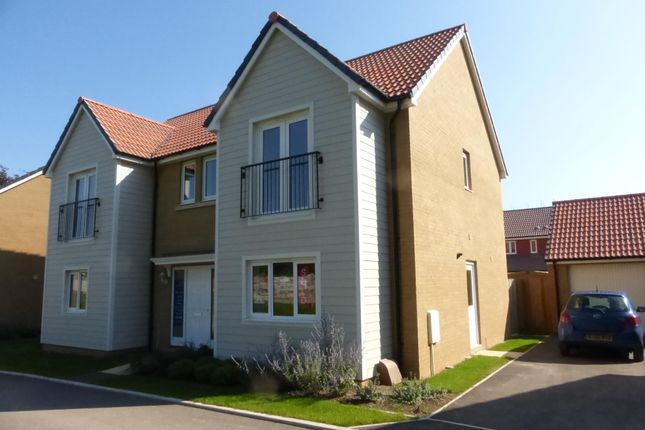 Thumbnail Detached house to rent in Bounty Grove, Exeter