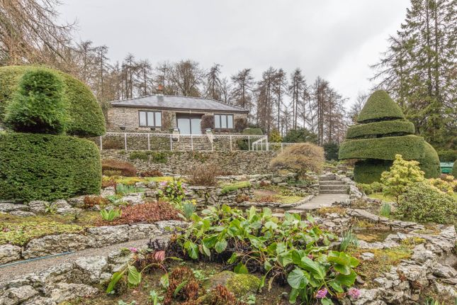Thumbnail Detached bungalow for sale in Wayside, Brigsteer Road, Kendal