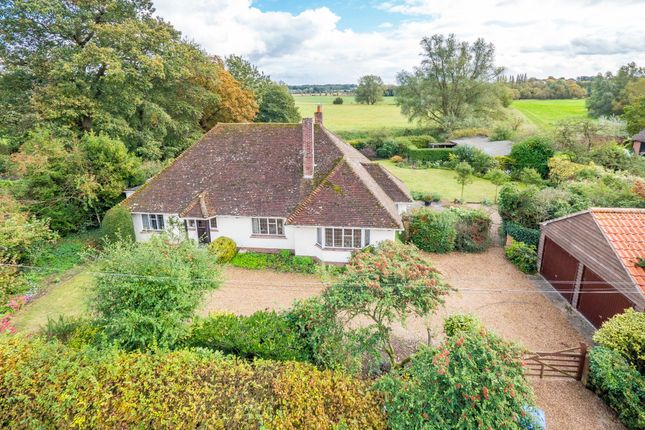 Thumbnail Detached bungalow for sale in Court Street, Nayland, Colchester