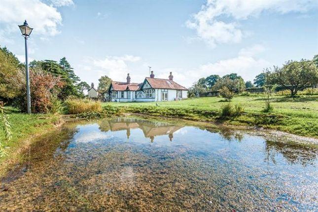 7 bedroom detached bungalow for sale in Lyme Road, Axminster