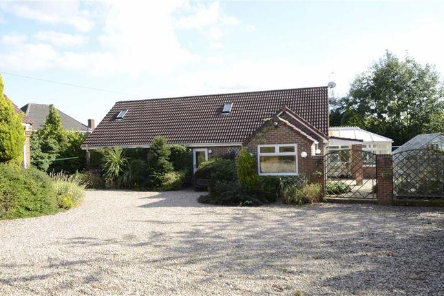 Thumbnail Detached bungalow for sale in The Common, South Normanton, Alfreton