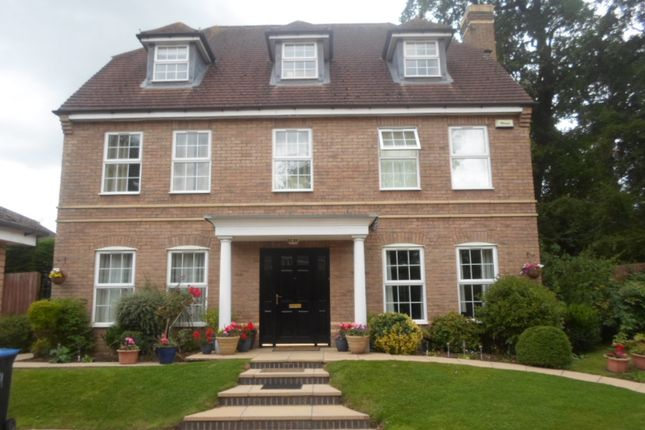 Thumbnail Detached house to rent in Chestnut Drive, Stretton Hall