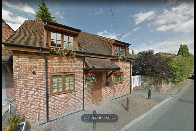 Thumbnail Detached house to rent in High Street, Selborne, Alton