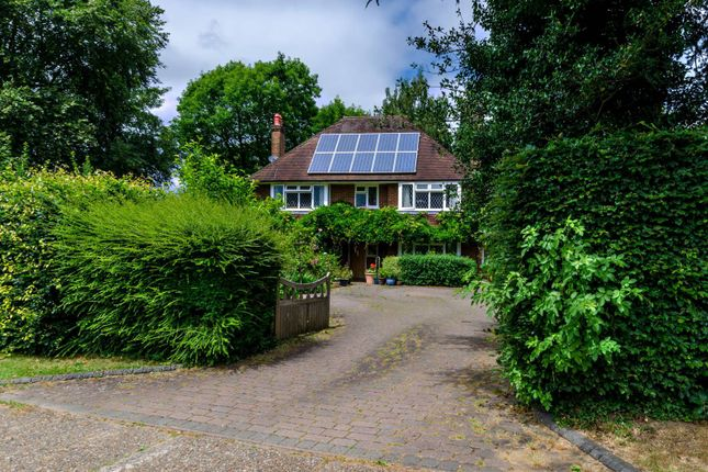 Thumbnail Detached house to rent in Beechway, Merrow