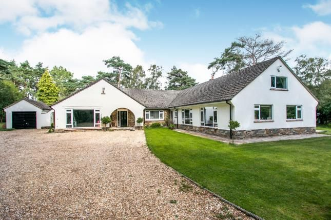 Thumbnail Bungalow for sale in Ringwood, Hampshire, .