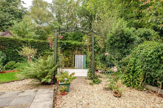 Garden of The Glade, Caerwnon Park, Builth Wells LD2