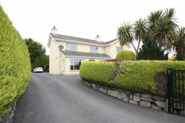 Thumbnail Detached house for sale in Guiness Road, Ballynahinch, Down