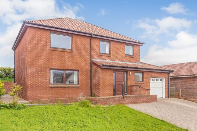 Thumbnail Detached house for sale in Eildon View, Tweedmouth, Berwick Upon Tweed, Northumberland