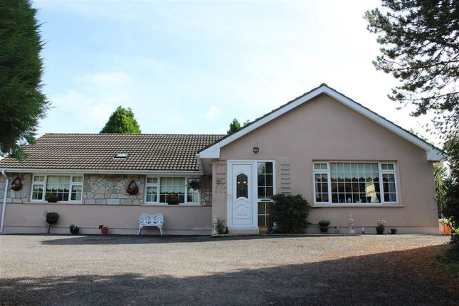 Thumbnail Bungalow for sale in ''hill View'' 41 Commons Hall Road, Newry