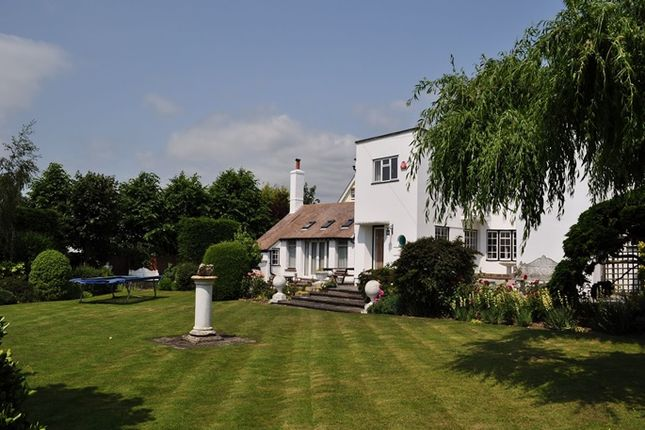 Thumbnail Detached house for sale in Third Avenue, Frinton-On-Sea