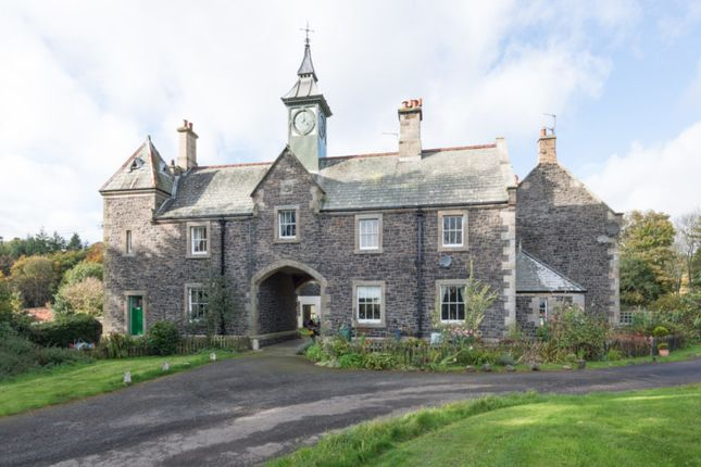 Thumbnail Cottage for sale in Middleton, Northumberland