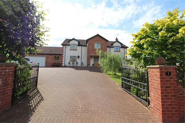 Thumbnail Detached house for sale in Pear Tree Way, Penrith, Cumbria