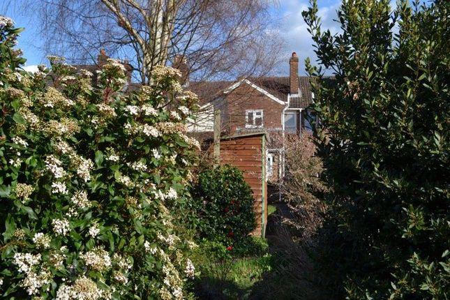 Rear Elevation From Garden