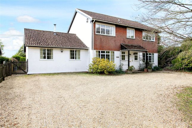 Thumbnail Detached house for sale in East Woodyates, Salisbury