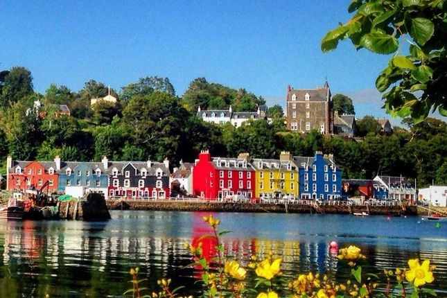 Thumbnail Cottage for sale in Rock Cottage, Back Brae, Tobermory