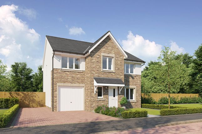 "Thumbnail Detached house for sale in ""Heddon-II"" at Meikle Earnock Road, Hamilton"