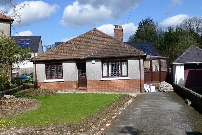 Thumbnail Bungalow to rent in Mostyn Avenue, Carmarthen