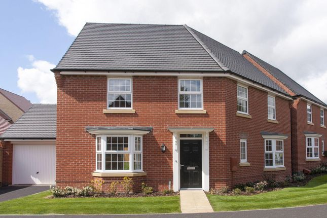 "Thumbnail Detached house for sale in ""Ashtree"" at The Long Shoot, Nuneaton"