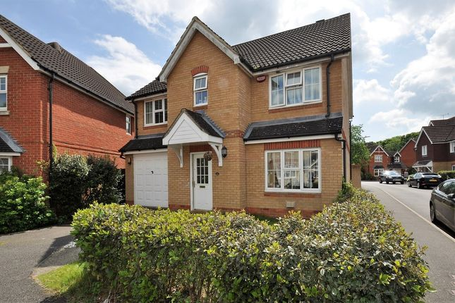 Thumbnail Detached house to rent in Bryony Drive, Kingsnorth, Ashford