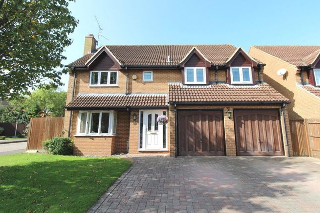 Thumbnail Detached house for sale in Pyotts Copse, Old Basing, Basingstoke