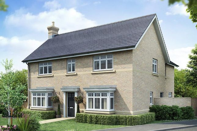 Thumbnail Detached house for sale in Uppingham Road, Oakham